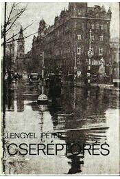 Cseréptörés - Lengyel Péter - Régikönyvek