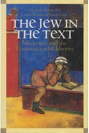 The Jew in the Text - Linda Nochlin, Tamar Garb - Régikönyvek
