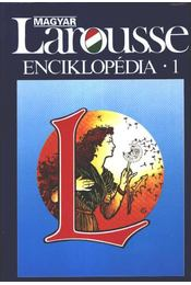 Magyar Larousse Enciklopédia 1. kötet (A-GY) - Régikönyvek