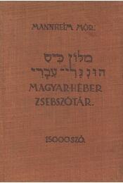 Magyar-héber zsebszótár - Mannheim Mór - Régikönyvek