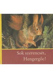 Sok szerencsét, Hengergőc! - Massny, Helmut - Régikönyvek