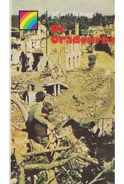 Út Oradourba - Max Hastings - Régikönyvek