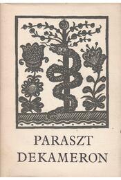 Paraszt dekameron - Nagy Olga - Régikönyvek