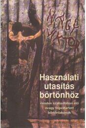Használati utasítás börtönhöz - Nagy Viktor - Régikönyvek