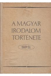 A magyar irodalom története 1849-ig - Pándi Pál, Bóka László - Régikönyvek