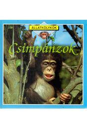 Csimpánzok - Petty, Kate - Régikönyvek