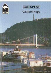 Budapest - Gellért-hegy - Priszter Szaniszló - Régikönyvek