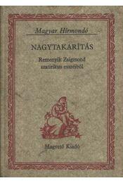 Nagytakarítás - Remenyik Zsigmond - Régikönyvek
