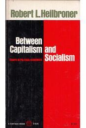 Between Capitalism and Socialism: Essays in Political Economics - Robert L. Heilbroner - Régikönyvek