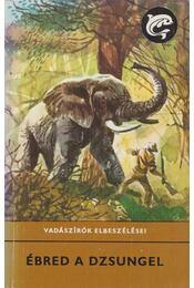 Ébred a dzsungel - Rónaszegi Miklós - Régikönyvek