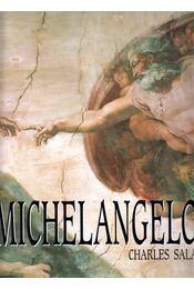 Michelangelo - Sala, Charles - Régikönyvek