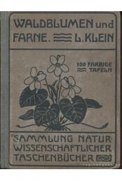 Unsere Waldblumen und Farngewachse - Klein, Ludwig - Régikönyvek