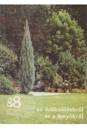 88 színes oldal az örökzöldekről és a fenyőkről - Czáka Sarolta - Régikönyvek