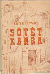 Sötét kamra - Sőtér István - Régikönyvek
