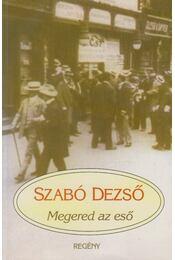 Megered az eső - Szabó Dezső - Régikönyvek