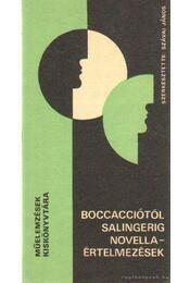 Boccacciótól Salingerig - Szávai János - Régikönyvek