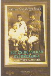 Egy zsidó polgár gyermekkora - Székács-Schönberger István - Régikönyvek