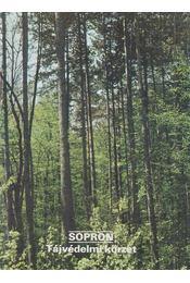Sopron - Tájvédelmi körzet - Temesi Ida - Régikönyvek