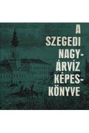 A szegedi nagyárvíz képeskönyve - Tóth Béla - Régikönyvek