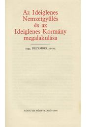 Az Ideiglenes Nemzetgyűlés és az Ideiglenes Kormány megalakulása - Vagyóczkyné Kékes Viktória - Régikönyvek