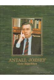Antall József élete képekben - Várhelyi András - Régikönyvek