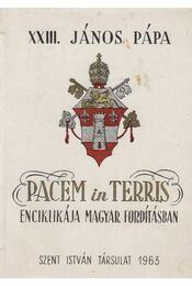 Pacem in Terris enciklikája magyar fordításban - XIII. János pápa - Régikönyvek